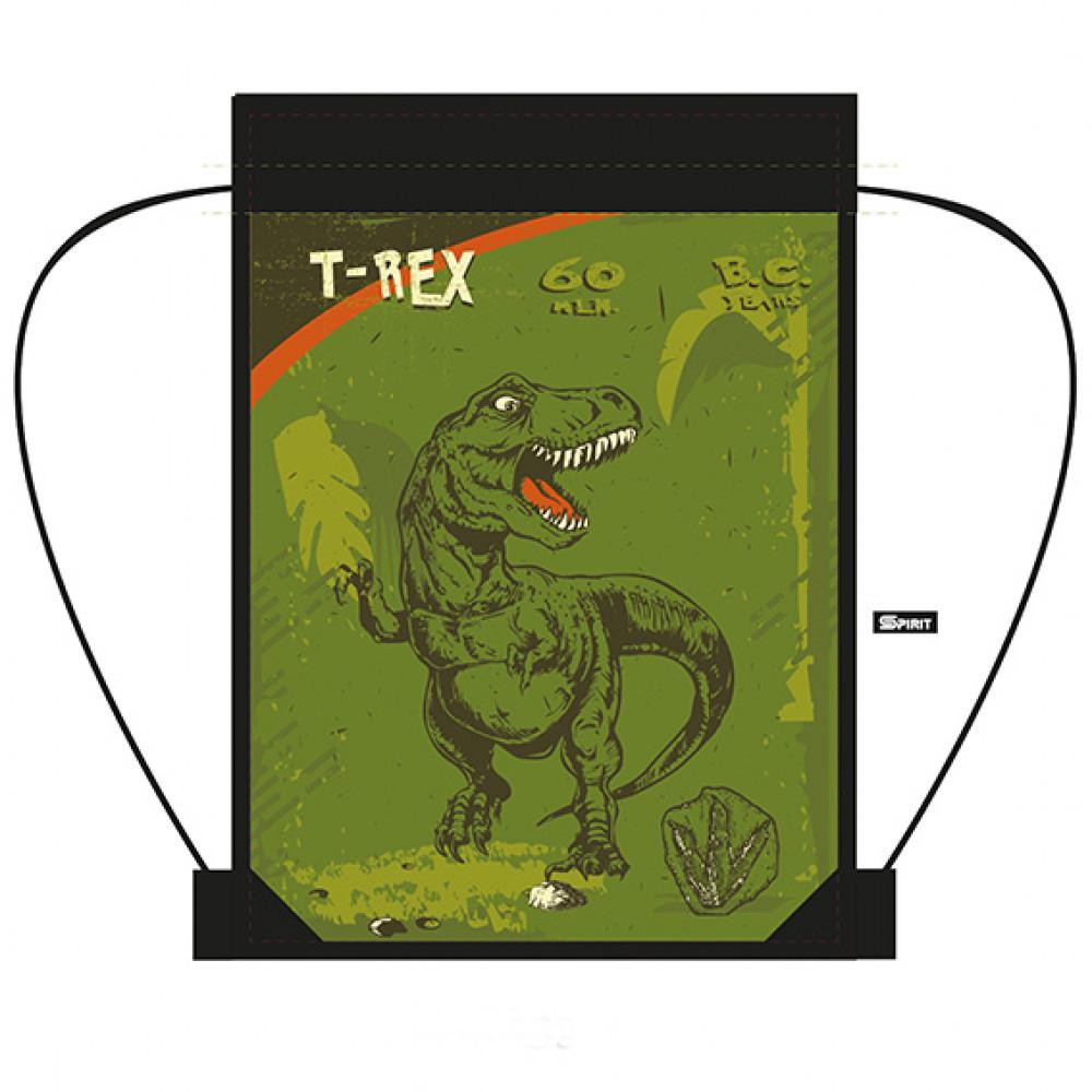 SPORT torba t-rex zr 17
