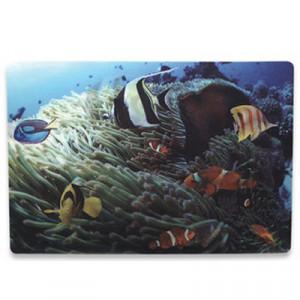MANHATTAN MH notebook skin, 3D tropski greben 422802