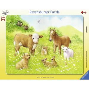 RAVENSBURGER puzzle - životinje u prirodi RA06631