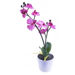 Svetleća orhideja u saksiji ART005031