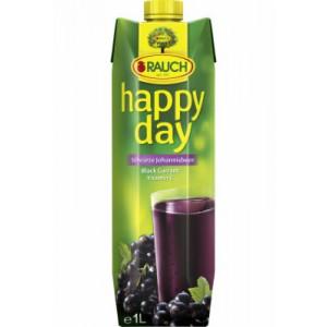 SOK HAPPY DAY CRNA RIBIZLA 1L RAUCH