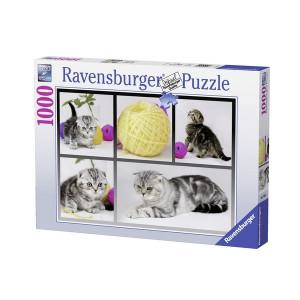 RAVENSBURGER puzzle - znatiželjni mačići RA19545